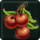 icon_item_fruit08.png